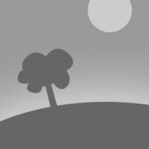 Pittsfield Memorial Day 2015