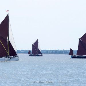 Pin Mill Sailing Club Thames Barge Match June 2018