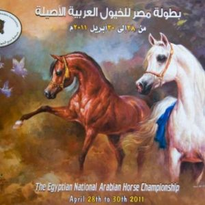 The Egyptian National Arabian Horse Championship - April 2011