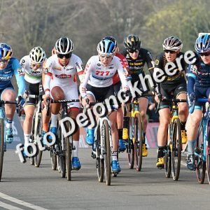 Hoogerheide  World  Cup    Dames  (234)  +  Elite  (103  foto's)