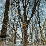 Downside Up Part5