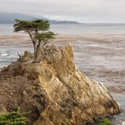 Pebble Beach and Pacific Grove