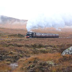 Scottish Steam 2014