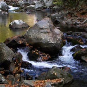 Smoky Mountains Nature Photos
